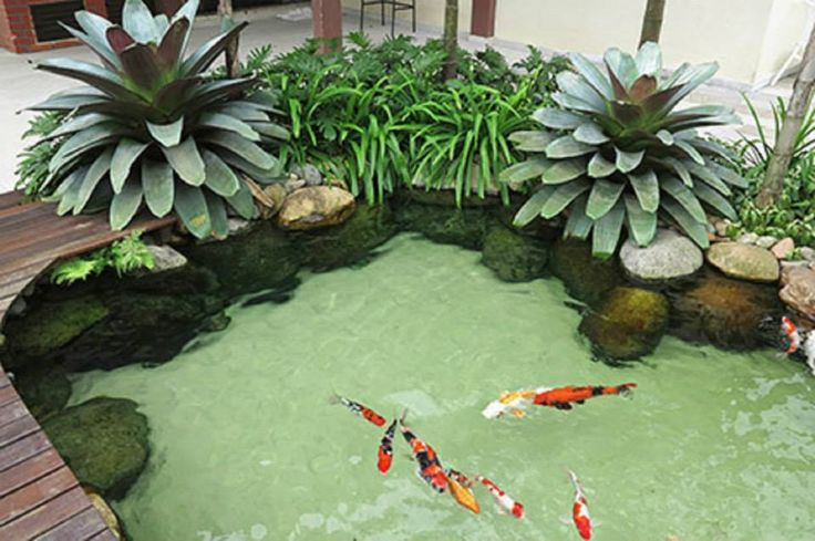 Best 25 koi pond design ideas on pinterest koi fish for Artificial fish pond