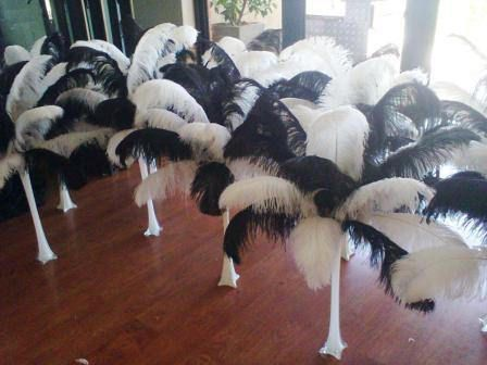 https://flic.kr/s/aHskFd1q2o | Matric Dance, Potgietersrus | Black and white ostrich feathers utilised to enhance a Mafia party theme.