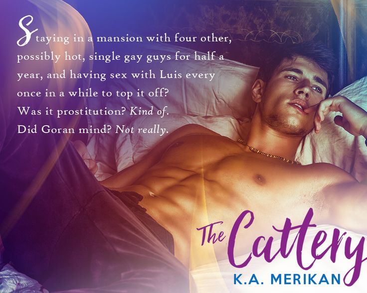 The Cattery by K.A. Merikan teaser