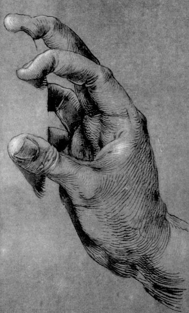 Albrecht Dürer, study of hands, art, illustration