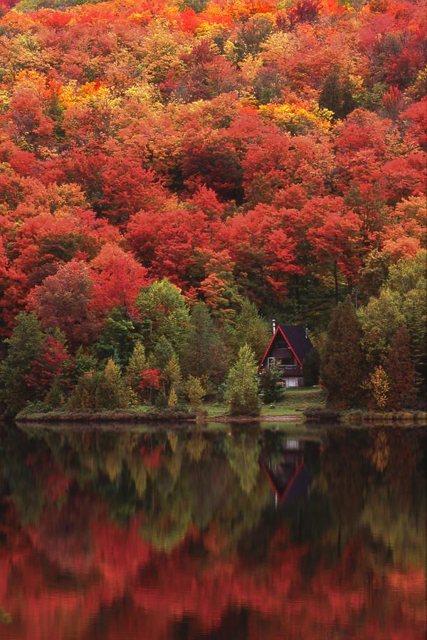 Autumn Lake, Quebec, Canada.                              …