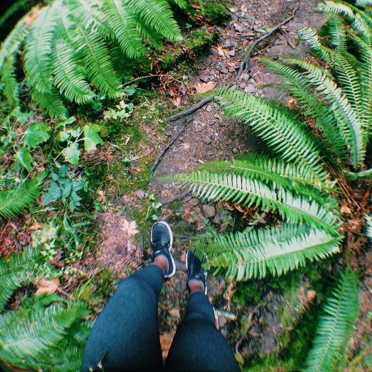 Hike through Mckenzie Bight. #victoria #pnw #westcoast #canada #vanisle #travel
