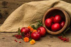 Красное яблоко в глиняной pot stock photo