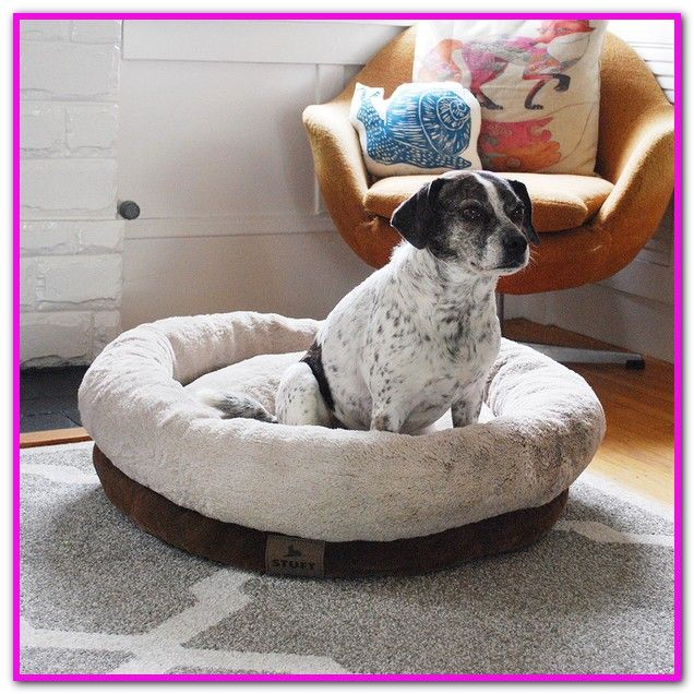 Stuft Dog Bed Care A Memory Foam Chip Cushion And Plush Walls Create A Cozy Haven While Also Providing Ample Dog Bed Extra Large Dog Bed Memory Foam Dog Bed