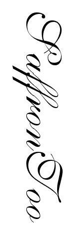 Incredible free calligraphy font available on Fonts2u. Download SaffronToo at http://www.fonts2u.com/saffrontoo.font