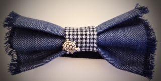 Turtle Bow Tie