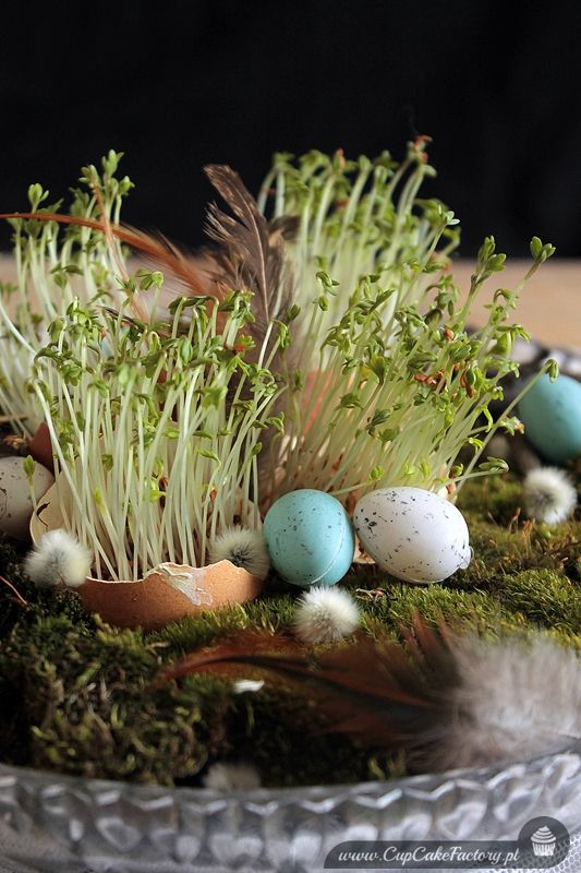 Easter table decoration   Cupcake Factory