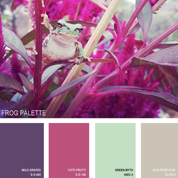 11 Beautiful Color Palettes Inspired By Nature — Frog Palette (all paint is Behr) [I like Sculptor Clay and Tutti Frutti; maybe Green Myth (for bathroom?) and maybe Wild Grapes.]