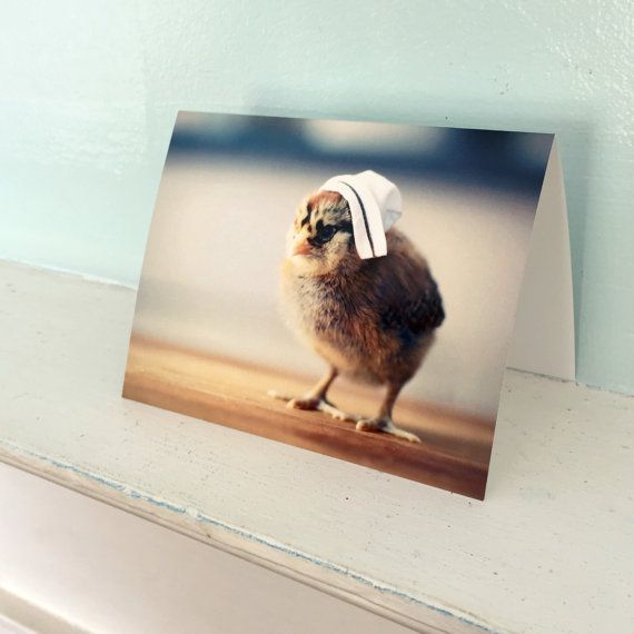 Greeting Card Chick in A Miniature Nurse Cap Photo by chicksinhats