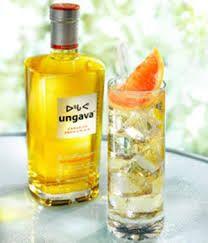 GIN - 'Ungava' Canadian gin - Arctic blend botanicals, wild rosehips, cloudberries, Nordic juniper, crowberries, & Labrador tea.