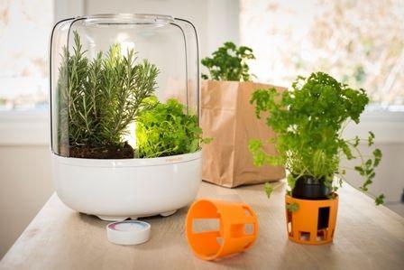 Kitchen Garden Basic - jernia.no