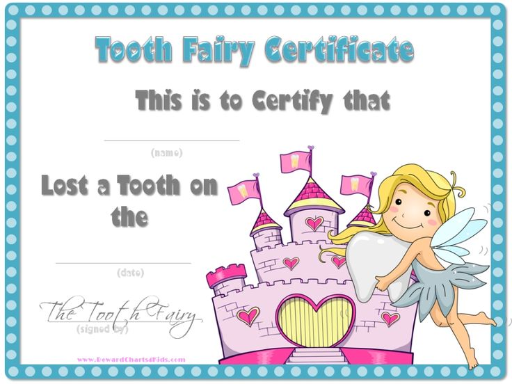tooth fairy certificate with a white background and a blue border