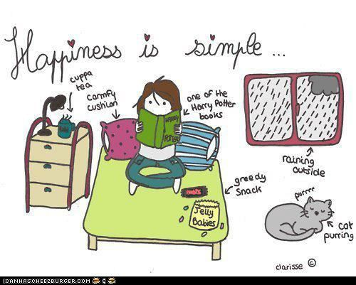 lol this is me... but i need a kitty :( and it'll be hot coco not tea and normally a romance novel but i might re-read HP again..
