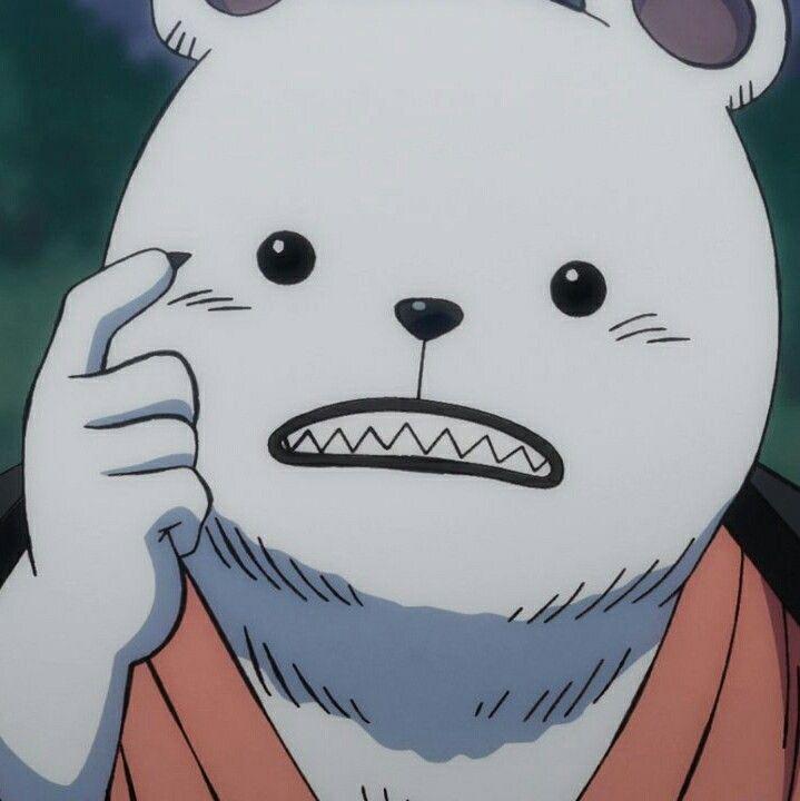 Bepo    One Piece Wano Land arc em 2020   One piece, Chapéu de palha, Chapéu