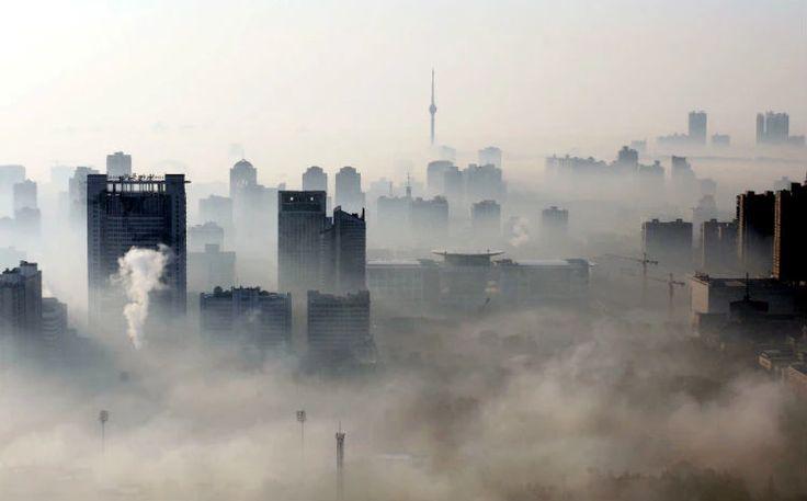 Sim, o mundo está esquentando. Veja 13 imagens que mostram consequências do aquecimento global.