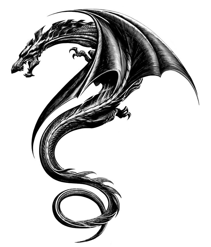 The Dragon Tattoo Original Design ...