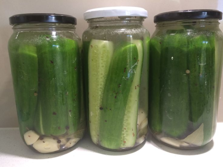 This morning at the farmers markets mum and I each got a free bag of cucumbers. I had already bought some so thus presenteth the perfect opportunity to experiment with pickling. This is something I…
