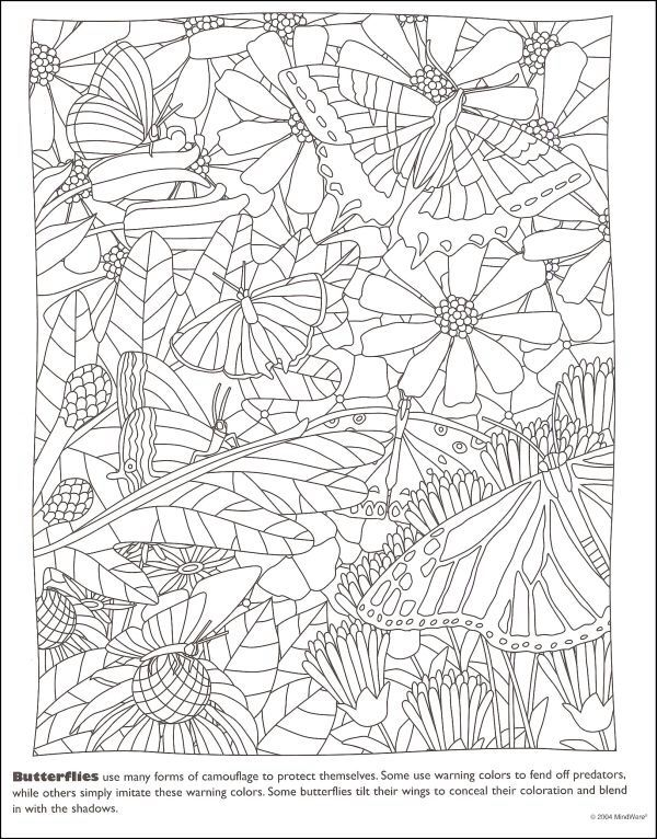 112 Best Adult Colouring Pages Images On Pinterest