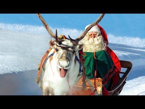 Los Renos de Papá Noel Santa Claus en Laponia
