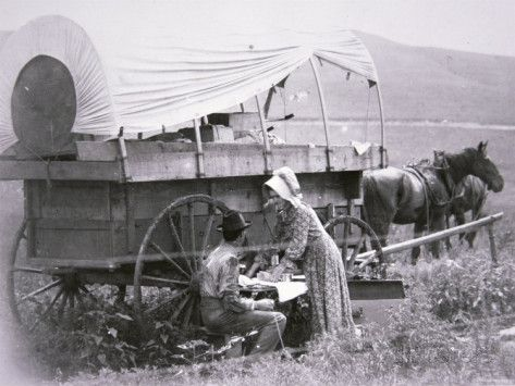 Typical Pioneer 39 S Covered Wagon Pictures Of Covered