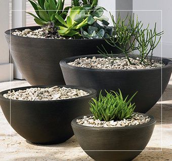 Pots Planters & More carries a wide variety of modern planters and flower pots of all sizes and styles. Enjoy FREE shipping throughout the continental U.S.