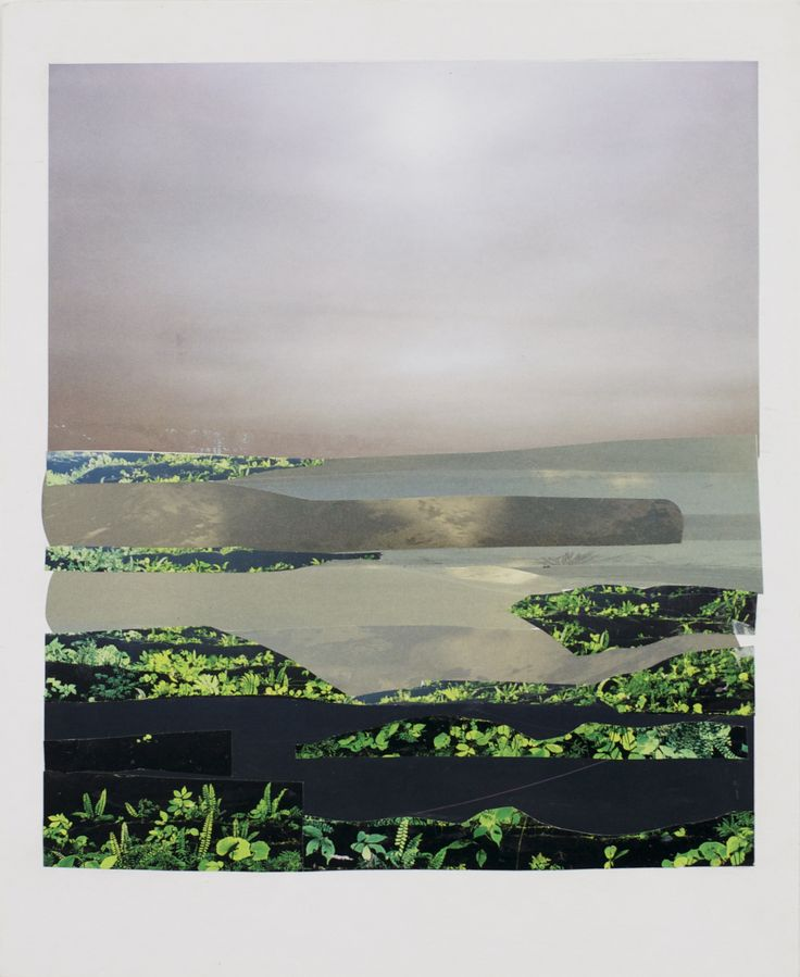 Anke Roder 'zeekraal' 2016 collage landscape, coast, sea