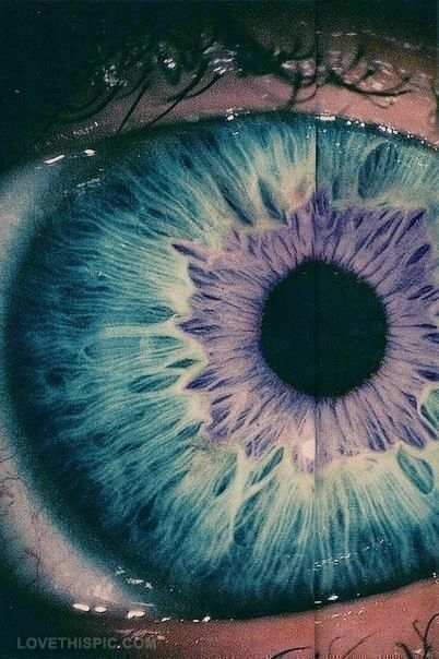 I wonder if this is a contact or just a crazy wild iris … regardless of reality or not, its really neat.
