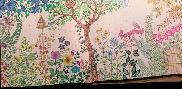 My First Pages In Secret Garden Book PGH