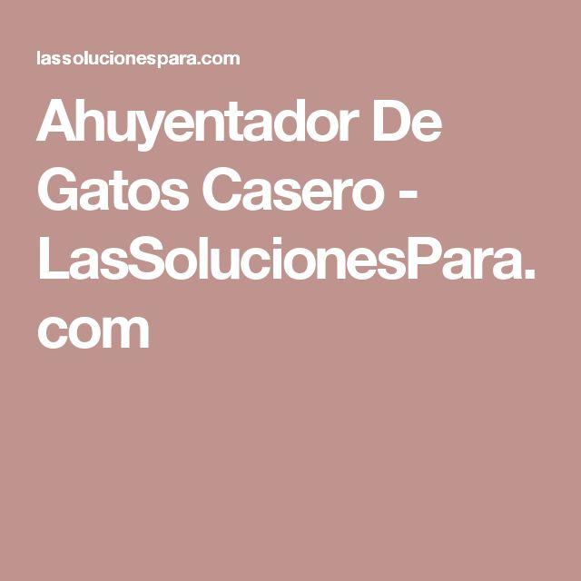 Ahuyentador De Gatos Casero - LasSolucionesPara.com