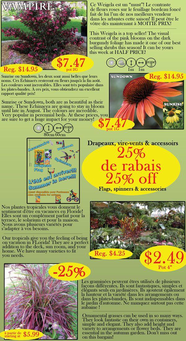 Les serres Legault greenhouses (serreslegault) on Pinterest