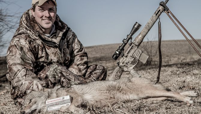 205 best images about Coyote and Coyote Hunting on ...