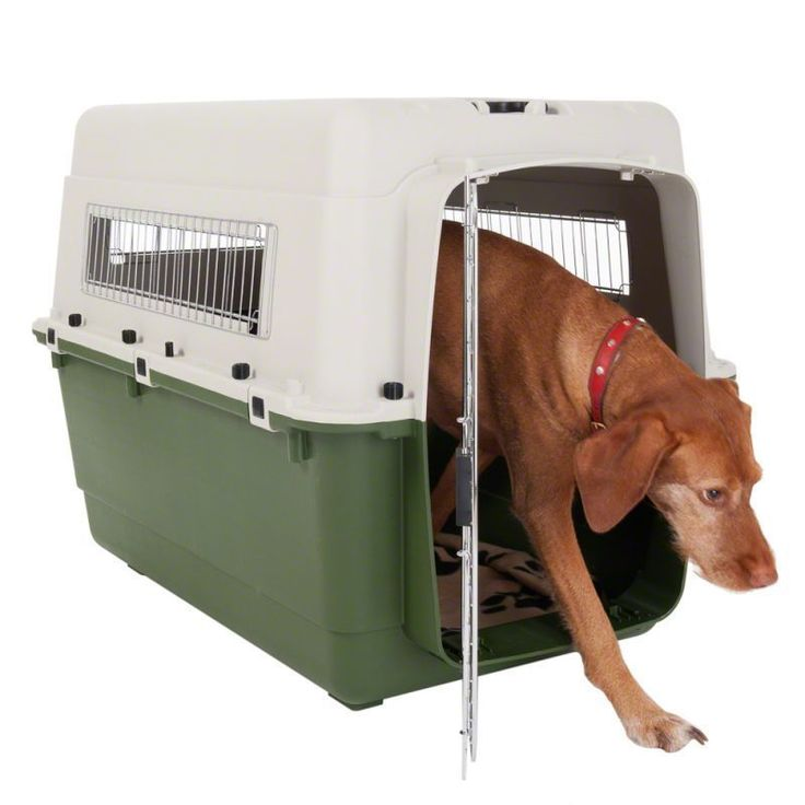 Plastic Dog Transport Crate For X Large Dogs Car Travel Cage Pet House kennel XL http://www.relaxingdog.com/product-category/dog-houses-crates-kennels/crates-kennels/