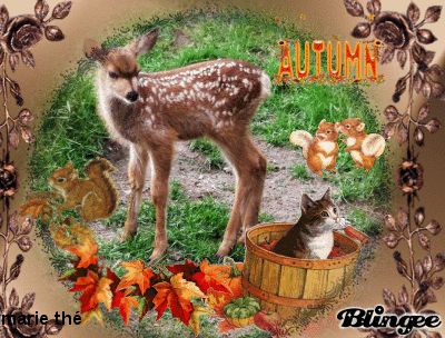 Image result for happy fall animated images