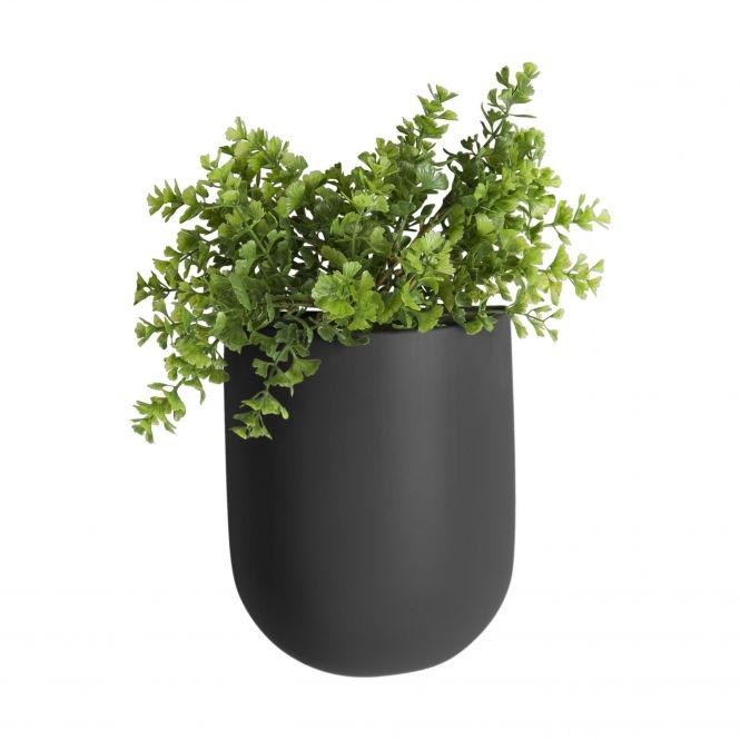 Unusual Plant Pots Indoor