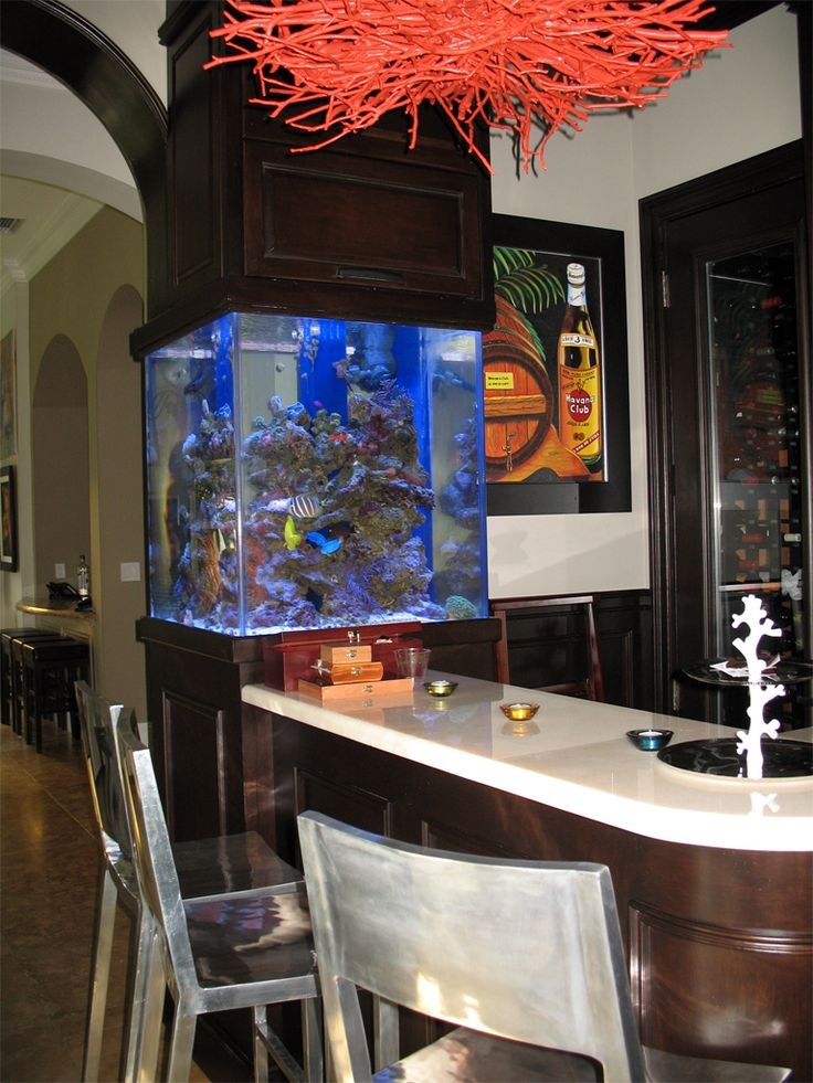 1000 images about fish tanks on pinterest fish tank table aquarium and betta fish tank - Fish tank dining room table ...