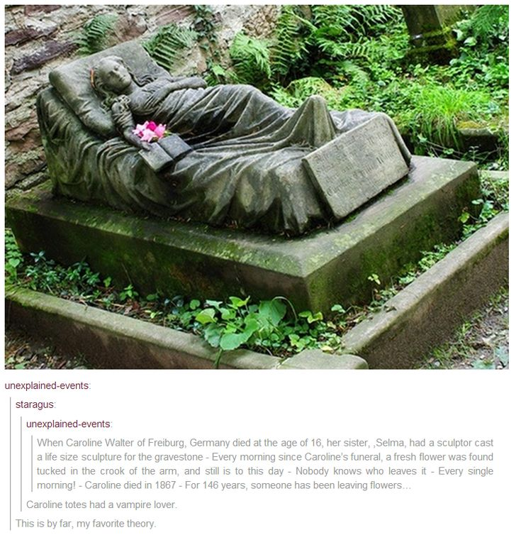 This could make for a VERY interesting story. Maybe not the vampire bit, though...