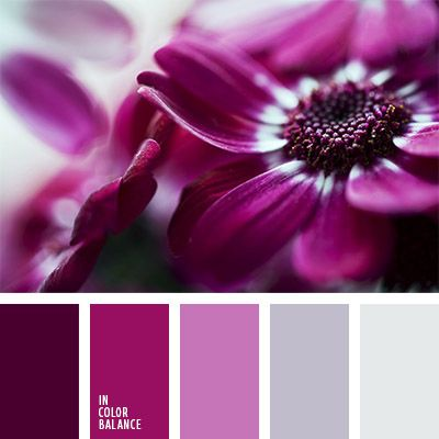 color burdeos, color fucsia, color fucsia con tono violeta, color lila, color rojo vino, color rosa aberenjenado, color rosado burdeos, color rosado grisáceo, colores plata y rosado, de color plata, gris y rosado, lila fuerte, paleta de colores monocromática, paleta del color rosado
