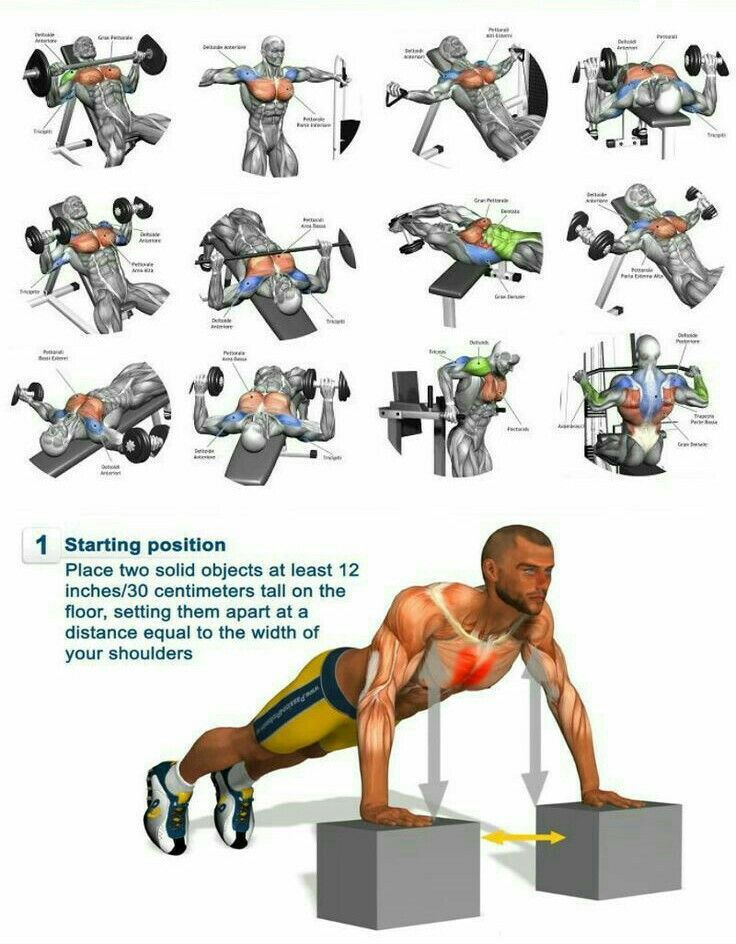 Chest Point Best Chest Workout Gym Workout Tips Workout Chart