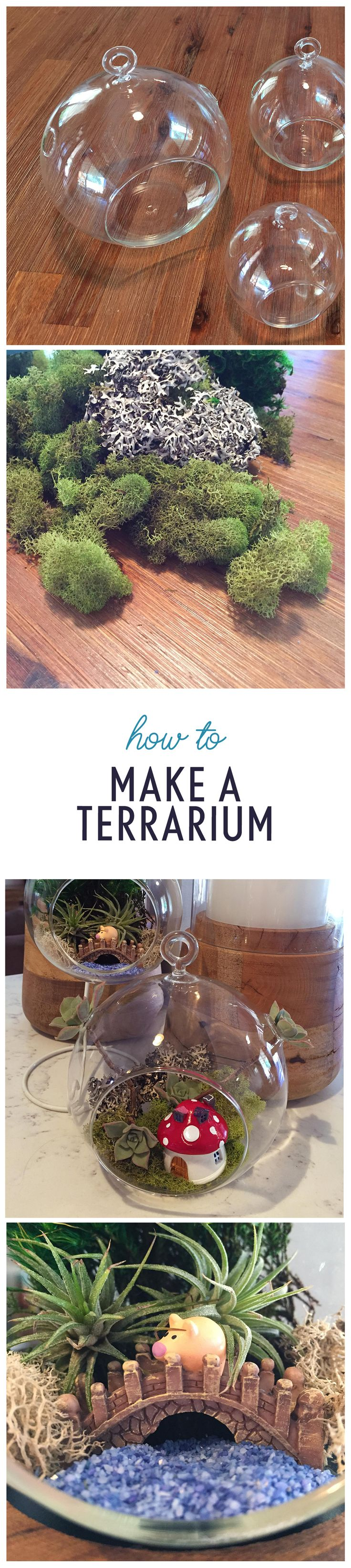 A terrarium is an easy way to make your own tabletop garden! Check out this free printable guide and get ideas for your own open or closed DIY terrarium using air plants, succulents, moss, and more. You can even make a fairy garden with miniatures!