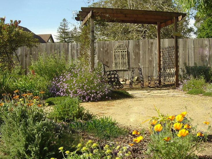30 best california native plants images on pinterest for California native landscape design