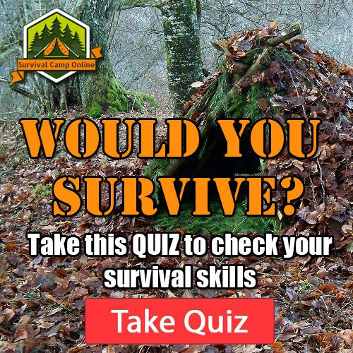 Disaster Survival Skills: 900 Best Hmmmm. . . . . . . Images On Pinterest