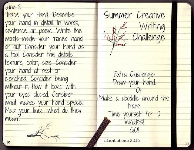 Write a novel challenge