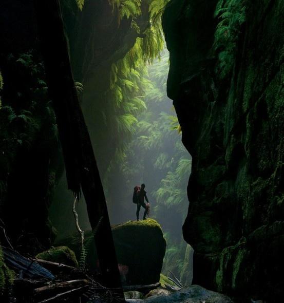 Claustral Canyon in Australia   http://www.tangerinetravel.com  #tangerinetravel #dreamvacation