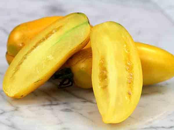 Roman Candle Beautiful, neon yellow, banana-shaped fruits ...