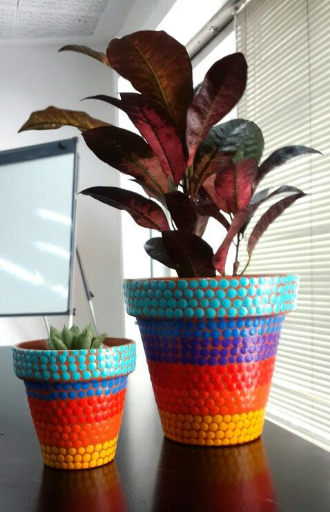 Rayas. Croton. Hand painted flowerpots. Macetas pintadas a mano. Facebook: A'cha Pots. achapots@hotmail.com