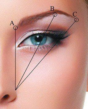 Как выщипывать брови? Форму бровей можно определить по линиям: первая показывает начало брови и должна проходить через внутренний уголок глаза (А), вторая показывает точку излома - проходит примерно через центр зрачка (В), третья через показывает конец брови и проходит через внешний угол глаза (С).