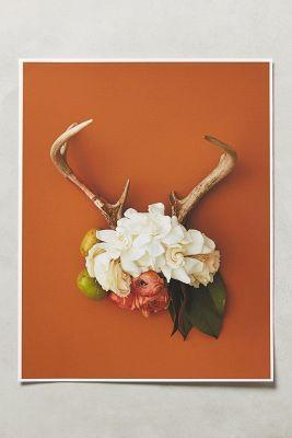#anthrofave Anthropologie Antler Collage Print