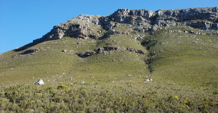 SA's Precious Fernkloof Nature Reserve is Under Threat