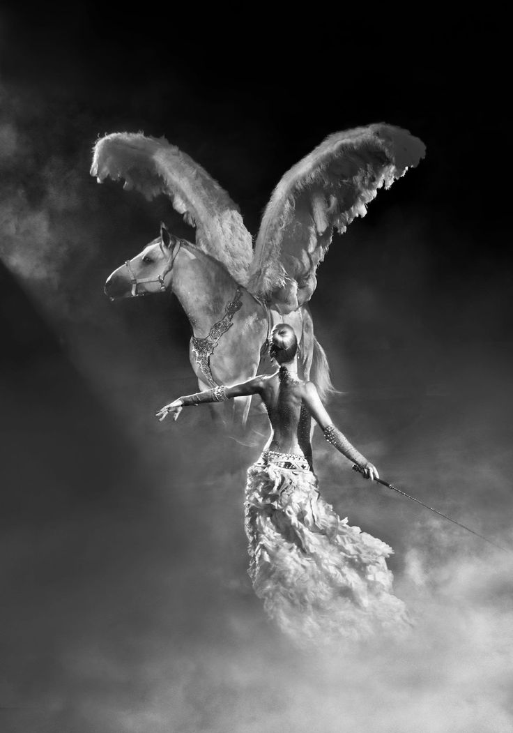 In Greek mythology, Erato is the Muse of lyric poetry. Her favorite animal is Pegasus, a winged divine stallion