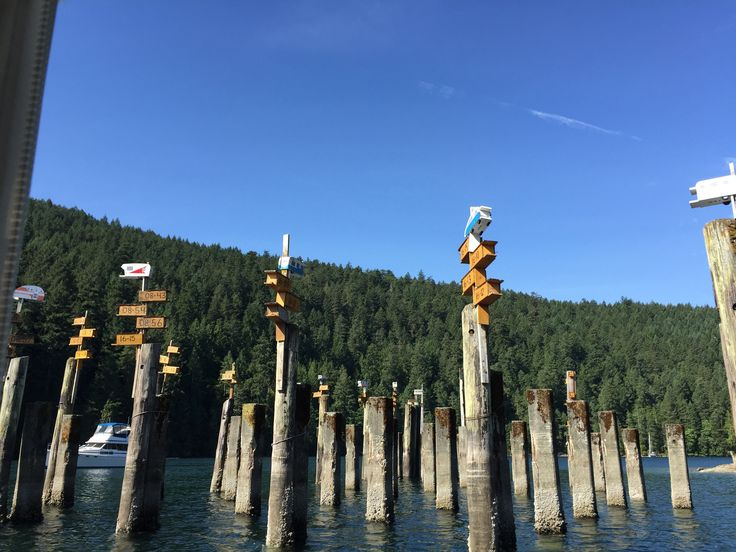 Butchart Gardens boat tour - Birdhouses for Purple Martin swallows - Tod Inlet, August, 2017